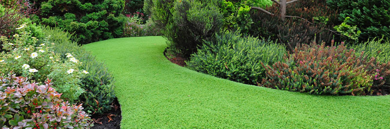 Pros Cons Of Artificial Grass Lazylawn